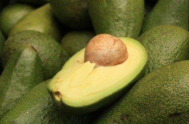 Avocado: i benefici nutrizionali per gli sportivi