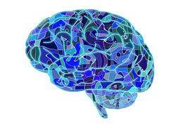 Icona cervello azzurro