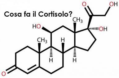 Cosa fa il cortisolo?